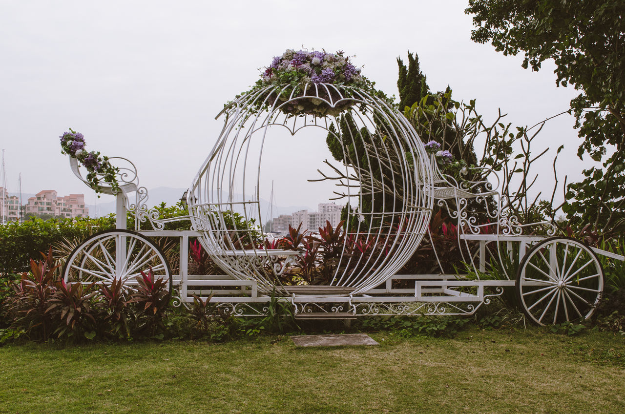 Waiting for Cinderella Carriage Cinderella Day Decoration Flower No People Outdoors Wheels Adapted To The City