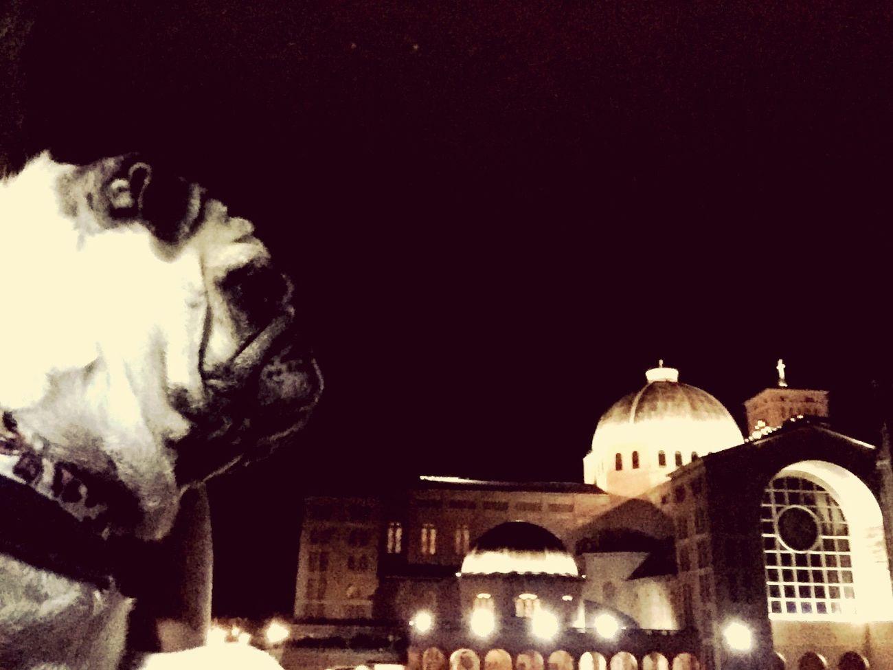 Um olhar para a basilica...,,
