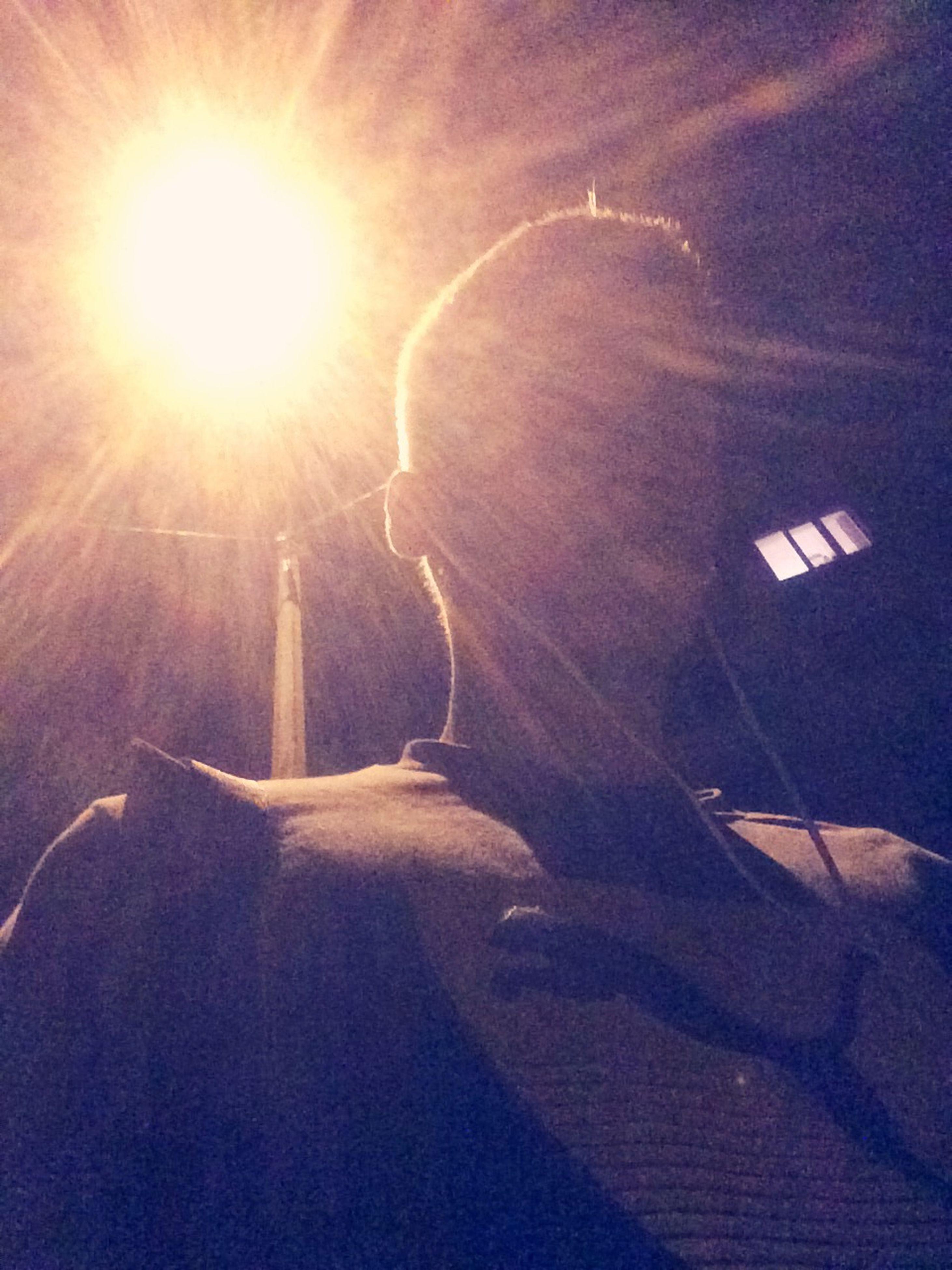 illuminated, lighting equipment, lens flare, sunbeam, street light, night, low angle view, sunlight, lifestyles, leisure activity, silhouette, men, light - natural phenomenon, sun, built structure, architecture, unrecognizable person, sky