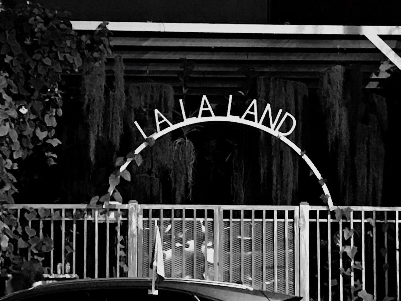 Lalaland Wynwood