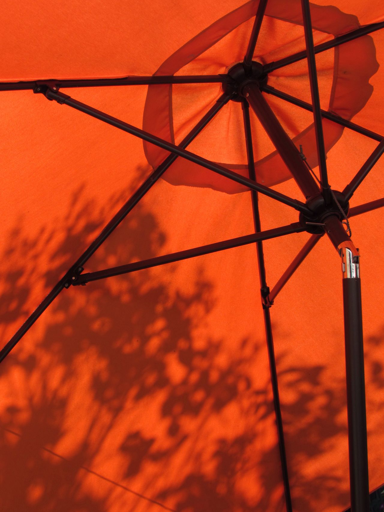 Lumière Orange Color Orange Summertime Lifestyles Life Is A Beach From My Point Of View Light