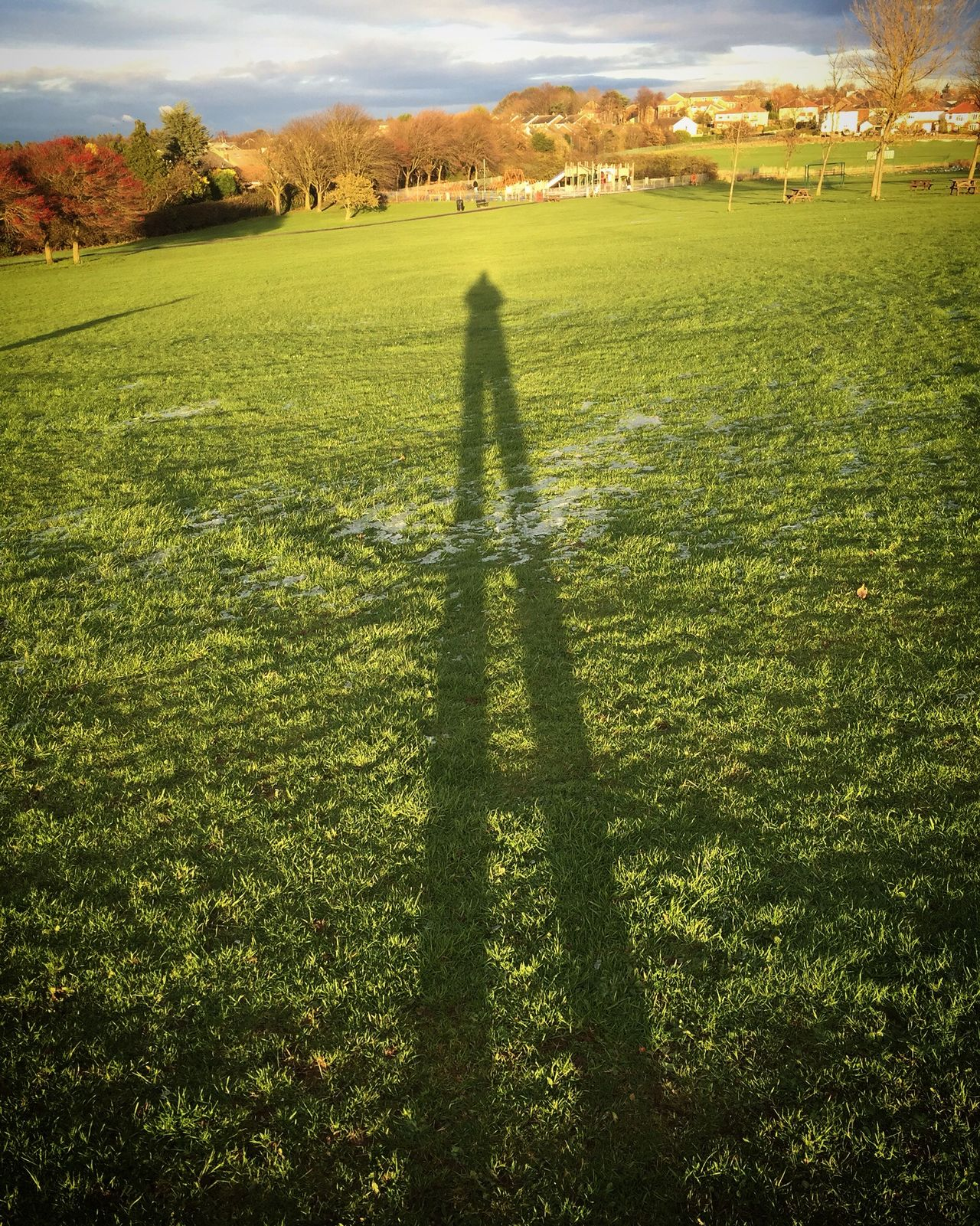 Winters long shadow is almost on us! Abstract Countryside Distant Negative Of Spider Web In Field, John Clark Park, Esto, Florida, Summertime Outdoors Remote Selfie Shadow Sheffield Tranquil Scene Winter Wintershadow