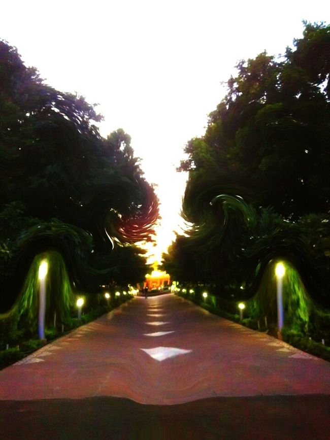 Enlightened path Enlightened Path Twisted Dream Twistedmind Twisted Tale Way Of Life Illuminated Path