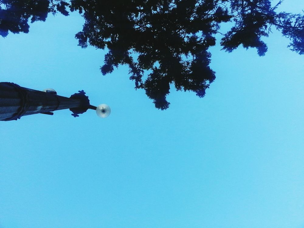 Sky Relaxing Summer ☀ Good Afternoon!