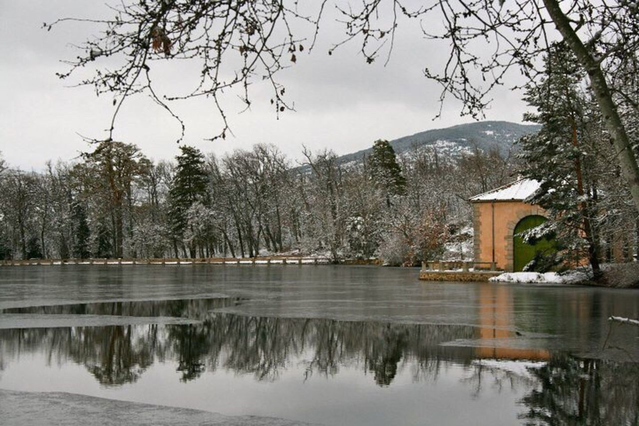 tree, winter, snow, mountain, reflection, cold temperature, nature, beauty in nature, lake, water, scenics, landscape, no people, bare tree, branch, outdoors, sky, day