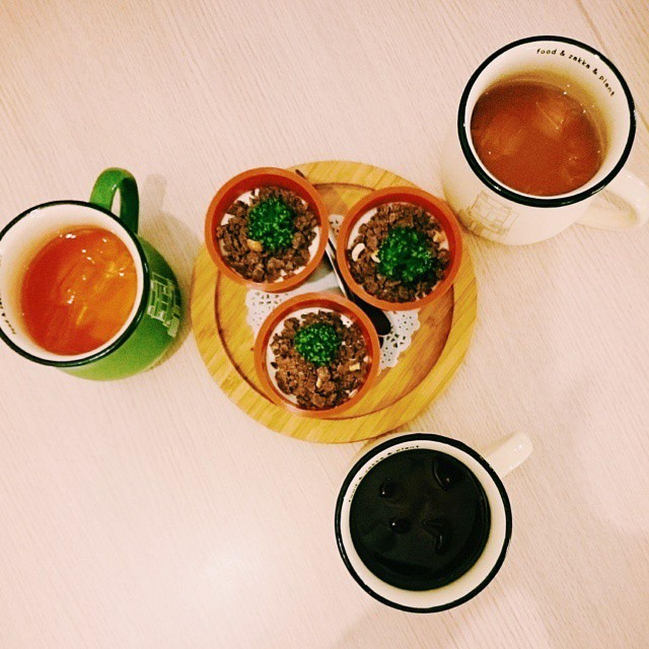 嘉義 午餐 巷子裡的小餐館 辣炒春川雞 花雕雞多肉植物 Zakka