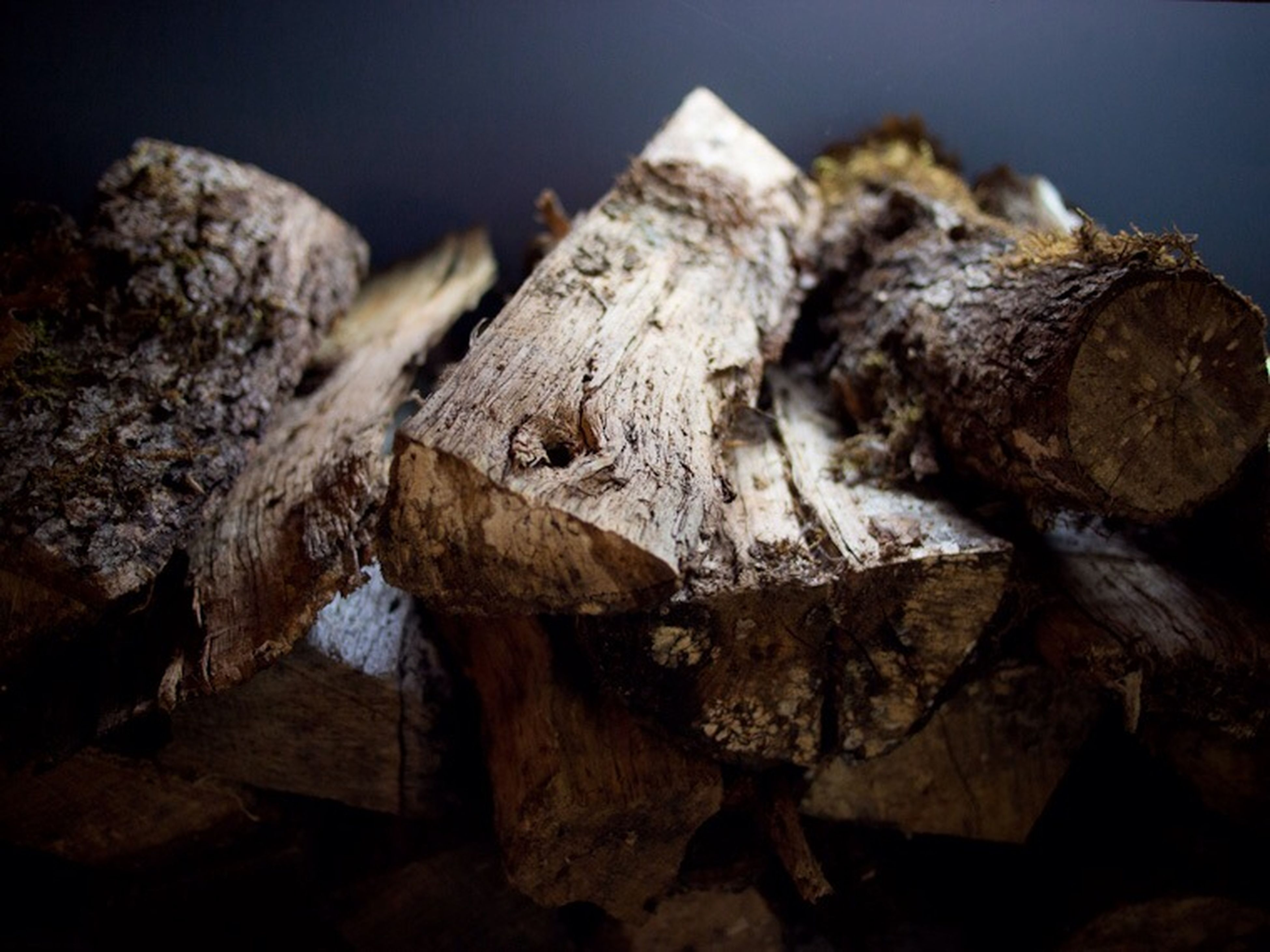 close-up, log, firewood, wood - material, textured, stack, rock - object, selective focus, no people, rough, nature, wood, deforestation, outdoors, damaged, focus on foreground, lumber industry, day, brown