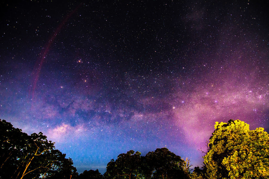 try capture milkyway Astronomy Beauty In Nature Constellation Galaxy Idyllic Infinity Low Angle View Majestic Milky Way Nature Night Scenics Sky Space Star Star - Space Star Field Tranquil Scene Tranquility Tree Under The Milky Way