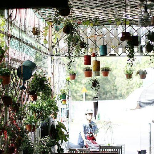Khu Vườn Nhỏ Vẫn là nơi bình yên cho một ngày mới! KHUVUONNHO Green Thichmauxanh Yeuthiennhien Garden Saigon Saigonese Hcm Phongcach Nhacuacoffeeholic NCC Ncchcm Nccsaigon Nccvietnam Love