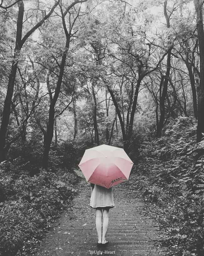 Raindrops Rainy Day Single Color Red Unbrella A Little Girl Trees