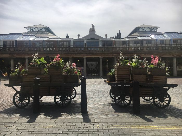 Covent Garden  Flowers Lunchtime May Cobbled Streets London Cobbles Sunshine Spring Shadows