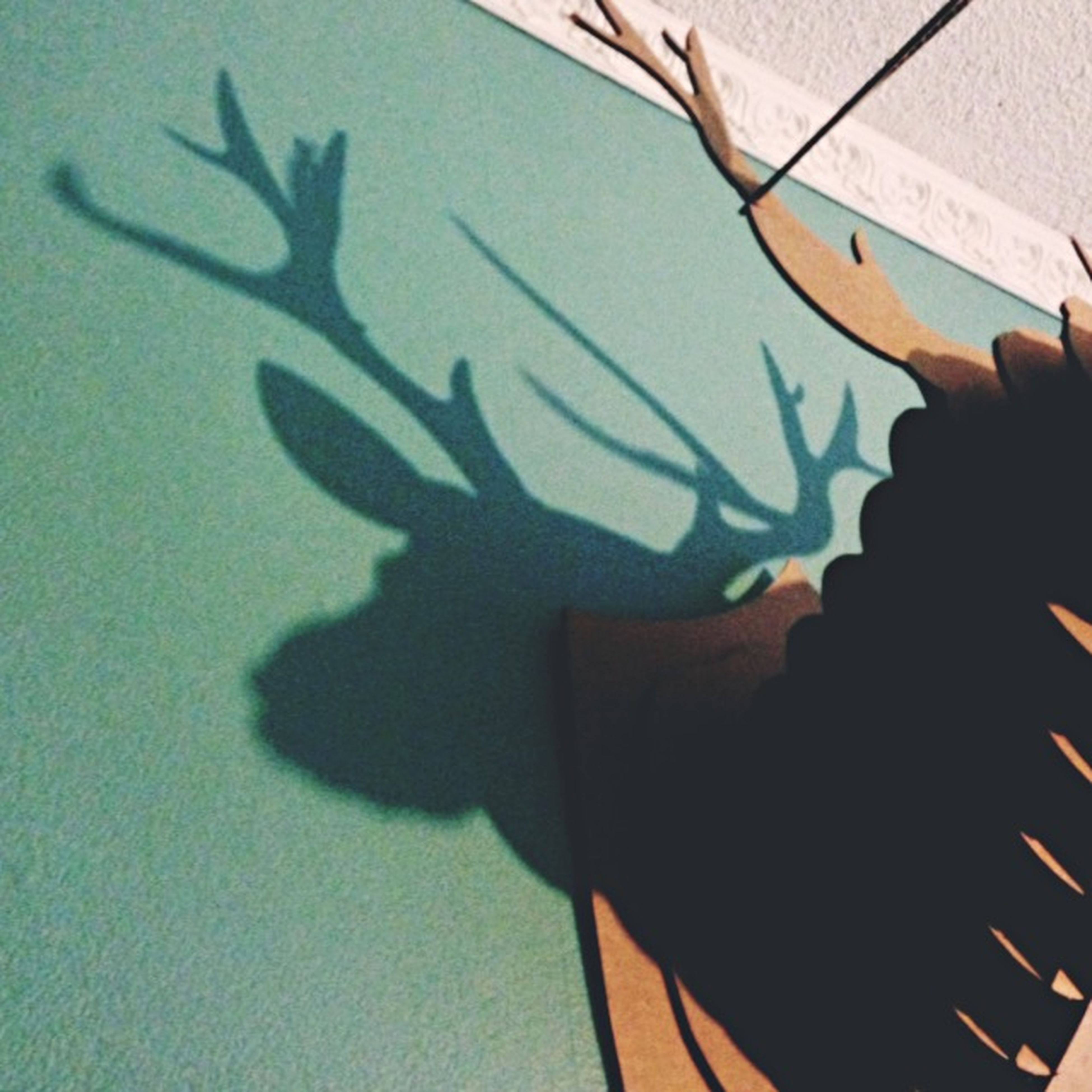 indoors, art, shadow, art and craft, creativity, high angle view, animal representation, close-up, part of, person, paper, focus on shadow, cropped, unrecognizable person, human representation, text, sunlight