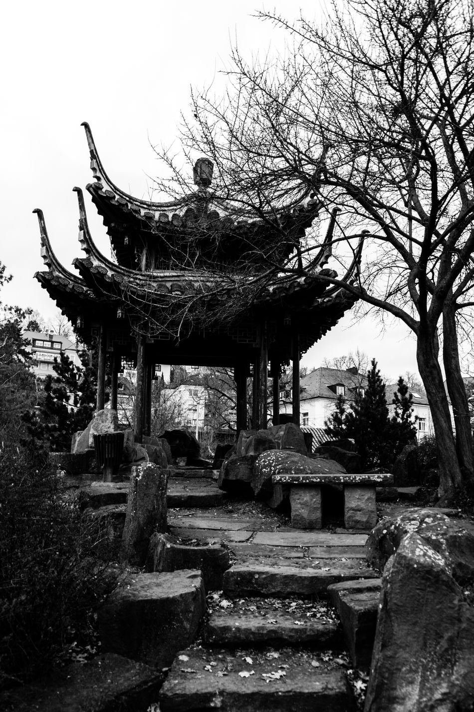 China garden Beautiful Black & White Black And White Blackandwhite China China Garden Day EyeEm EyeEm Best Shots Garden Germany Instagram Leaves No People Old Old Building  Outdoors Sky Stairway Stuttgart Tree Trip