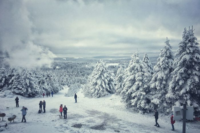 Winter Snow Cold Temperature Weather Nature Scenics Beauty In Nature Sky Cloud - Sky Tree Day Outdoors Real People Leisure Activity Tranquil Scene Landscape Tranquility Men Mountain People
