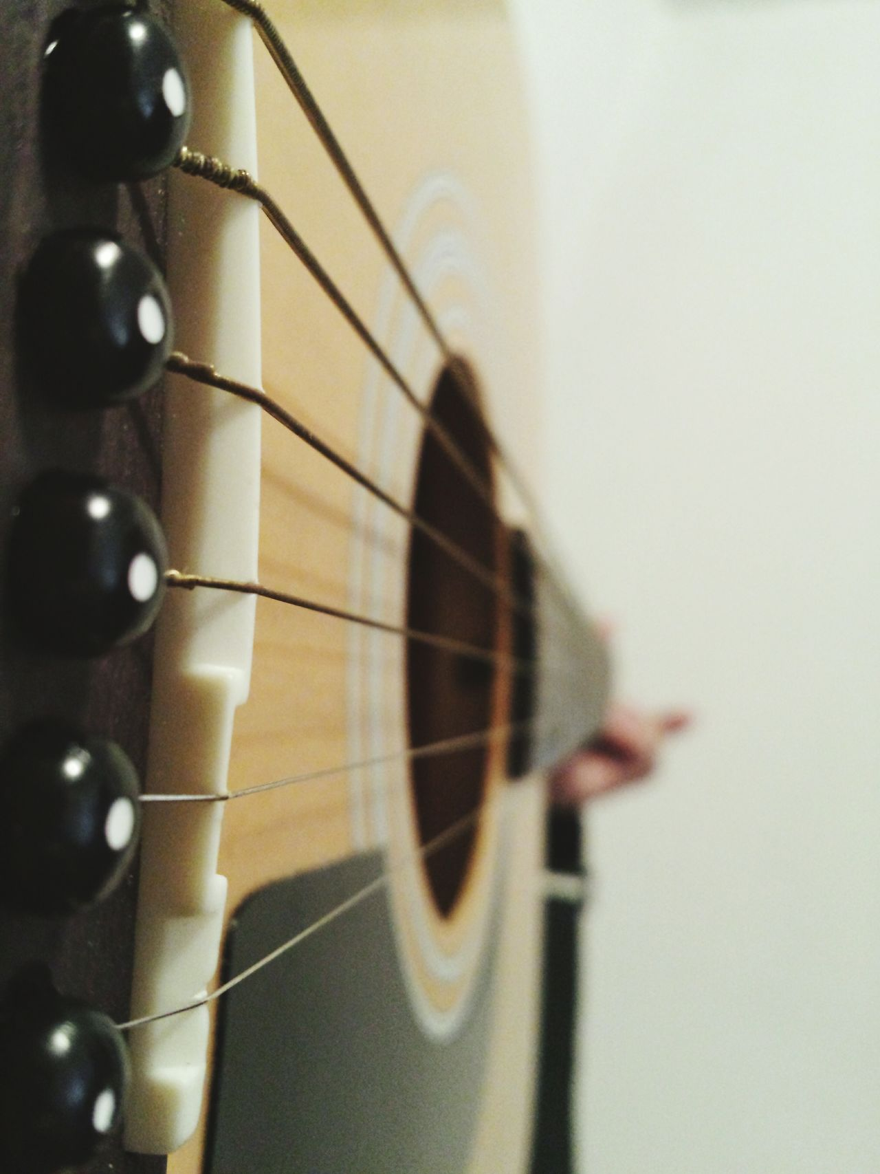Beautiful stock photos of guitar, Beige, Black, Copy Space, Day