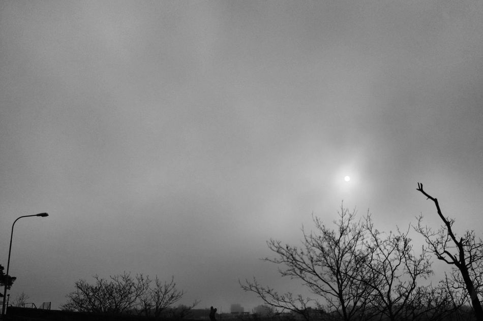 Bnw_friday_eyeemchallenge Bnw_when Less Is More Bnw Blackandwhite Silhouette Shades Of Grey