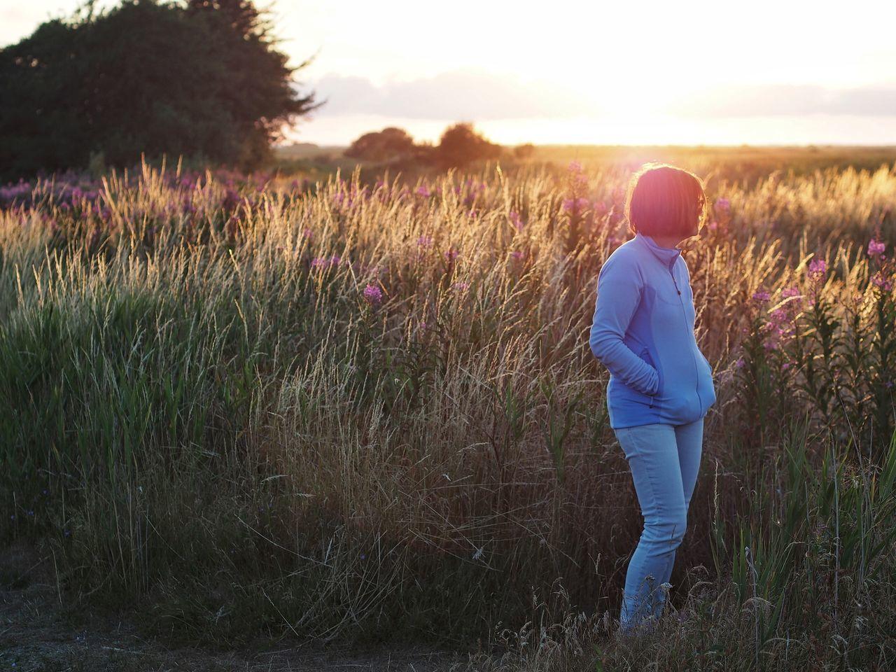 Evening Sky Gjellerodde Lemvig Sunset Silhouettes M.Zuiko 45mm 1:1,8