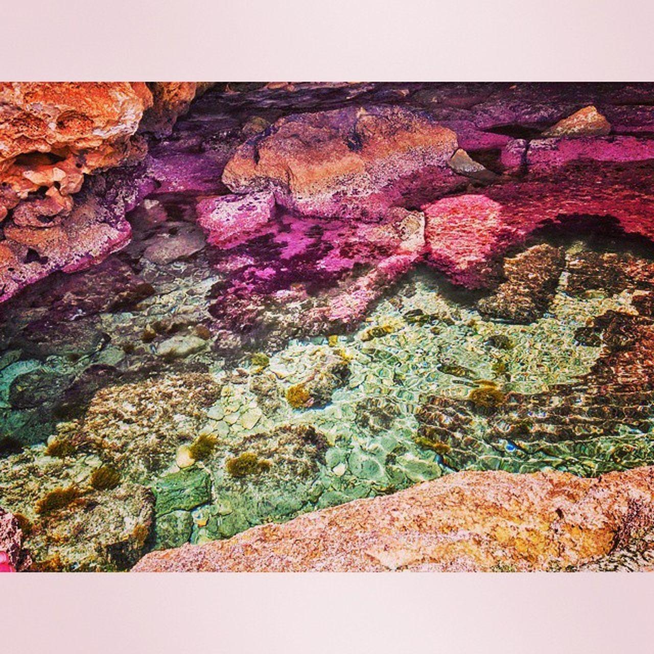 Mallorca es preciosa, buenos días!! Mallorca Playa Precioso Unico Màgico Paradisíaco Espectacular Incréible Colores Molinar  Portixol Cueva Secreta