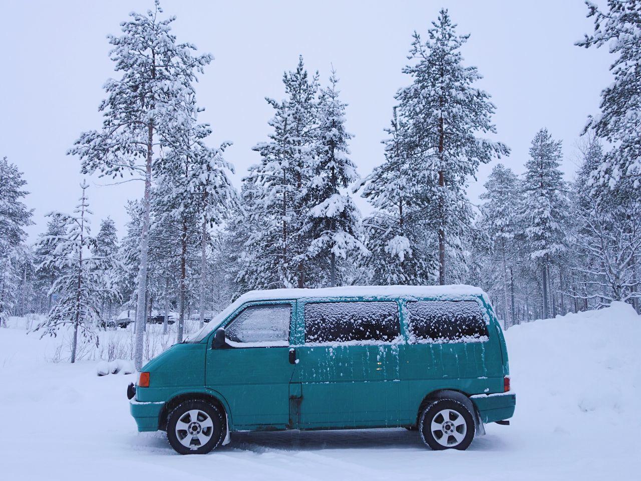 Beautiful stock photos of weihnachtsmann, tree, mode of transport, land vehicle, transportation