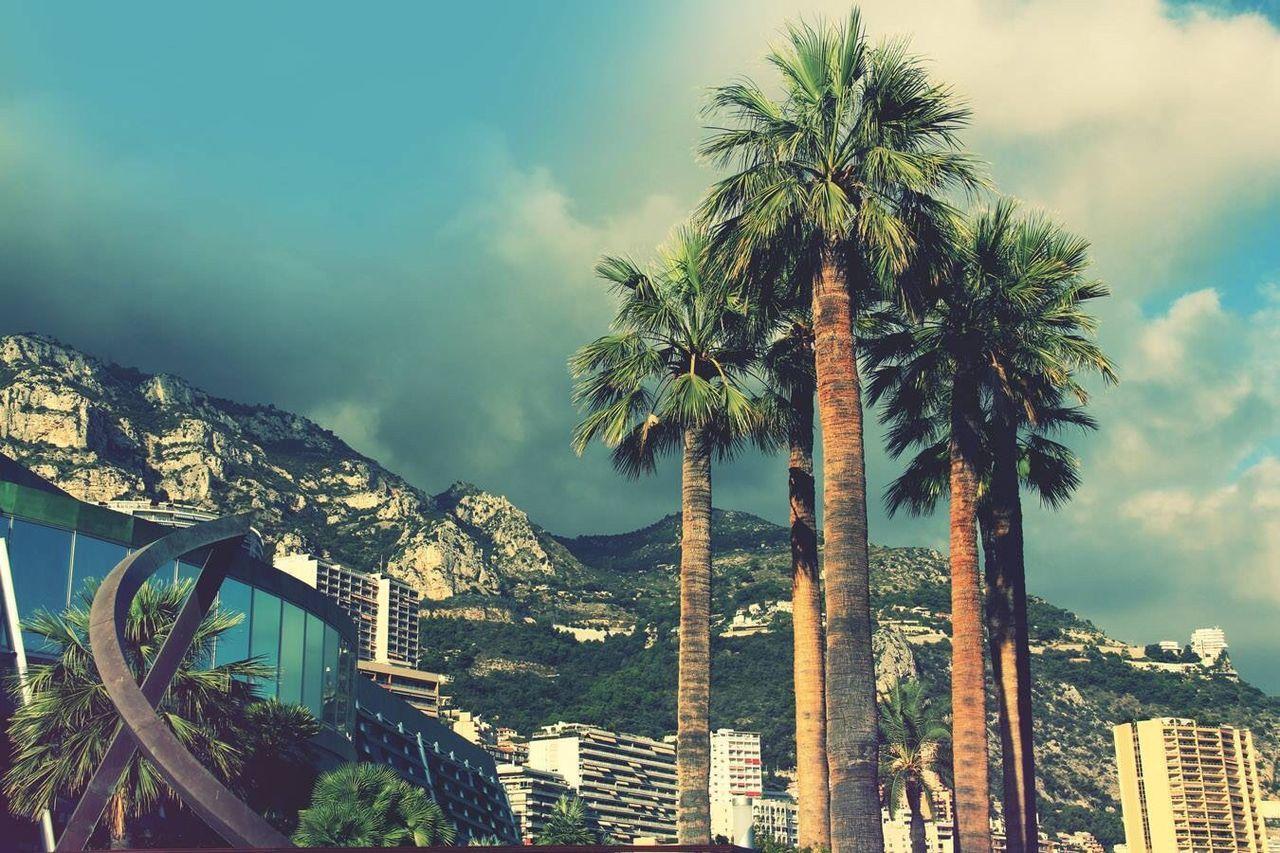 Monte Carlo is Paradise - Monte Carlo Monaco Photo Enjoying Life