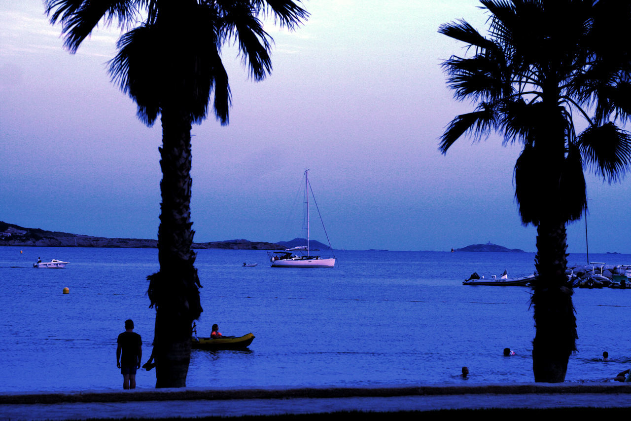 Beauty In Nature Blue Boat Calm Clear Sky Mode Of Transport Nature Nautical Vessel Ocean Outdoors Palm Tree Sailboat Scenics Sea Summer Tall - High Tranquil Scene Tranquility Transportation Tree Tree Trunk Vacations Water
