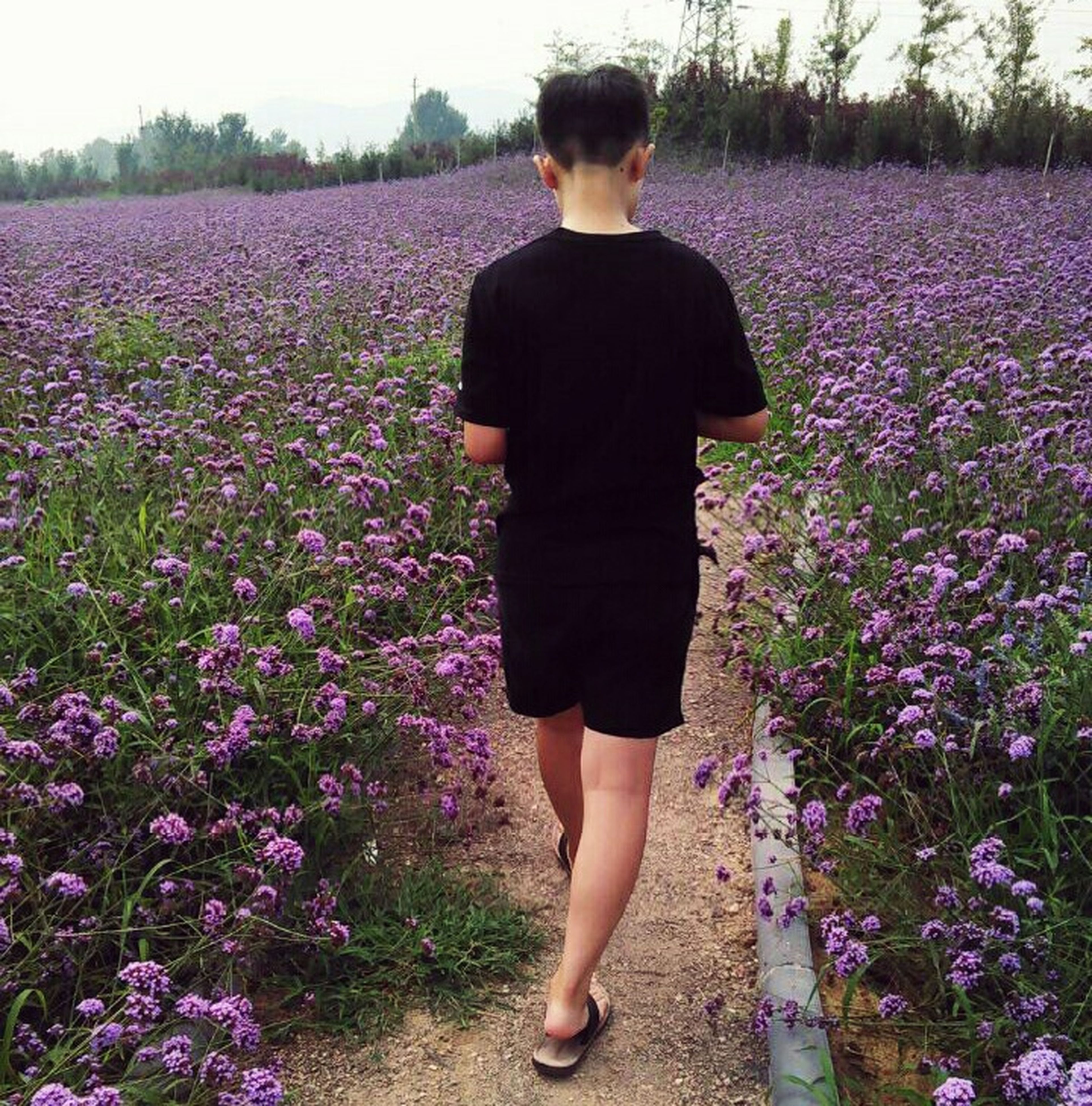 flower, lifestyles, standing, casual clothing, growth, leisure activity, beauty in nature, field, plant, nature, freshness, outdoors, fragility, day, tranquility, tranquil scene, blossom, grass, landscape, in bloom, pink color, blooming