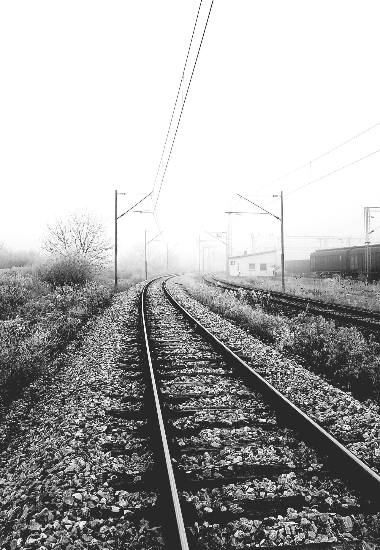 Blackandwhite Photography Blackandwhite Train Tracks Traveling Travelphotography Train Station Travelling Train Track train Outdoors Winter Wintertime No People Day Fog Misty Day Journey Wandering Winterscapes Searching New Unknown Journey Unknown Tranquility Tranquil Scene Serene