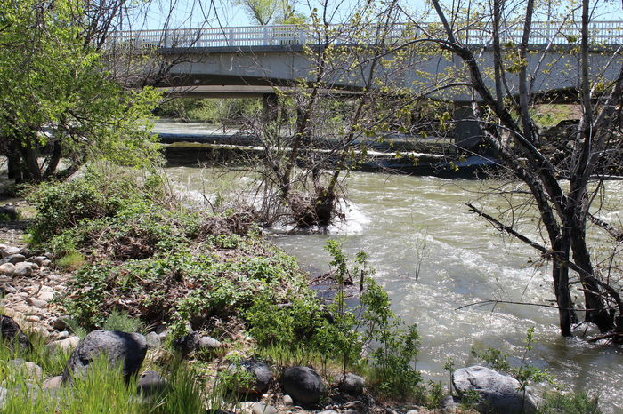 Day Flood Nature Outdoors Reno, NV River Snow Melt Springtime