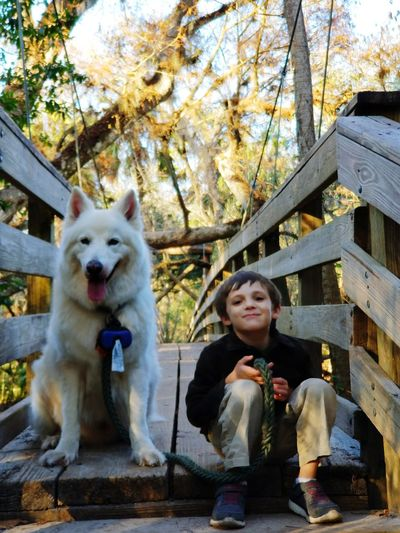 Berger Blanc Suisse Pets Dog One Animal Sitting One Person Animal Themes Domestic Animals Front View Childhood One Boy Only Child Children Only Tree Looking At Camera Portrait Outdoors People Smiling Full Length Happiness Real People Day Lifestyles Nature Mammal Autumn Standing
