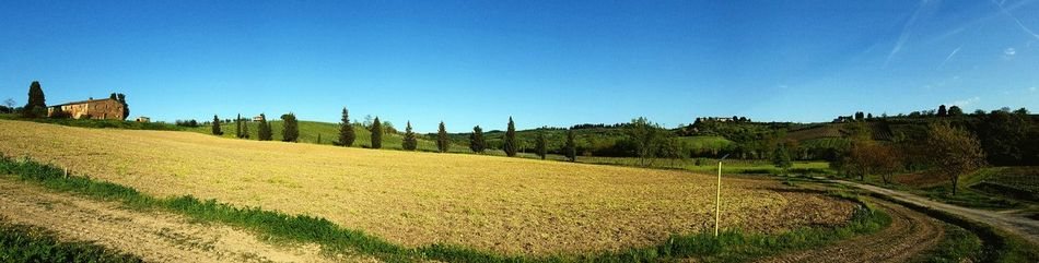 Tuscany 💚 my home Nature Amazing Green Peaceofsense Heaven Admaiora Followyourdreams Always Mylife Colorful Spring EyeEm Samsung Galaxy S6 Edge Photo Tuscany Countryside Tuscanymylove Lamiaterra Iminlovewiththis EyeEm Best Shots EyeEm Gallery Nature Panoramic View Panoramic Country Road