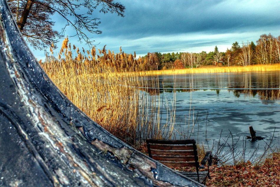 Beautiful stock photos of river, Beauty In Nature, Cattail, Chair, Cloud