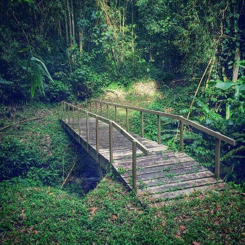 Livefunner Hdr_beautiful_landscapes Hdr_pics Caribbean_beautiful_landscapes Grenada Ig_caribbean Nuriss_tag Nature Bushments Westindies_landscape Westindies_nature Wu_caribbean Naturetrail