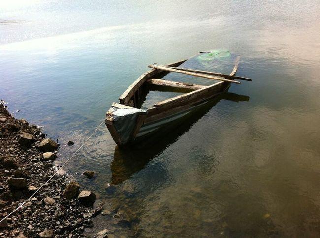 Sinkingboat Water Lake Nature Abandoned
