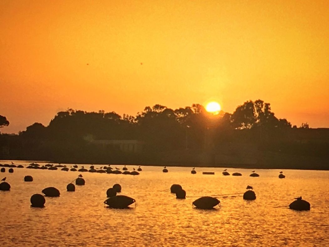 Relaxing Summertime Summersicily Atmosphere Sunset Colorsofnature Naturalreserve