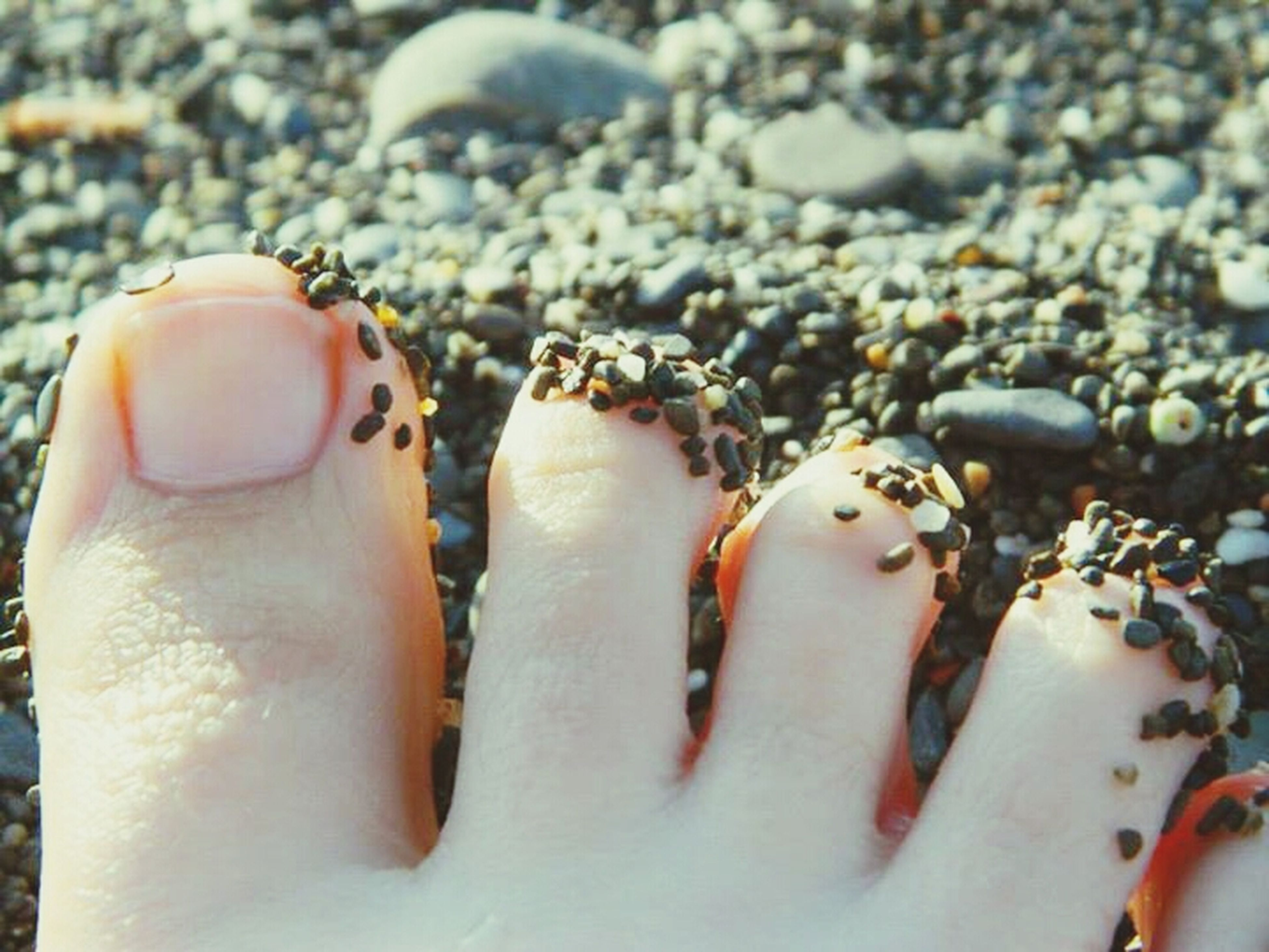beach, sand, close-up, lifestyles, person, leisure activity, part of, high angle view, seashell, focus on foreground, shore, day, water, outdoors, pebble, sea