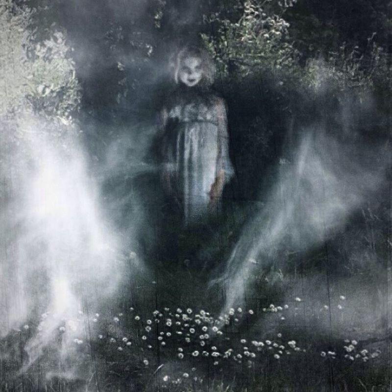 The Illusionist - 2014 EyeEm Awards Creepygirl Nature Fog
