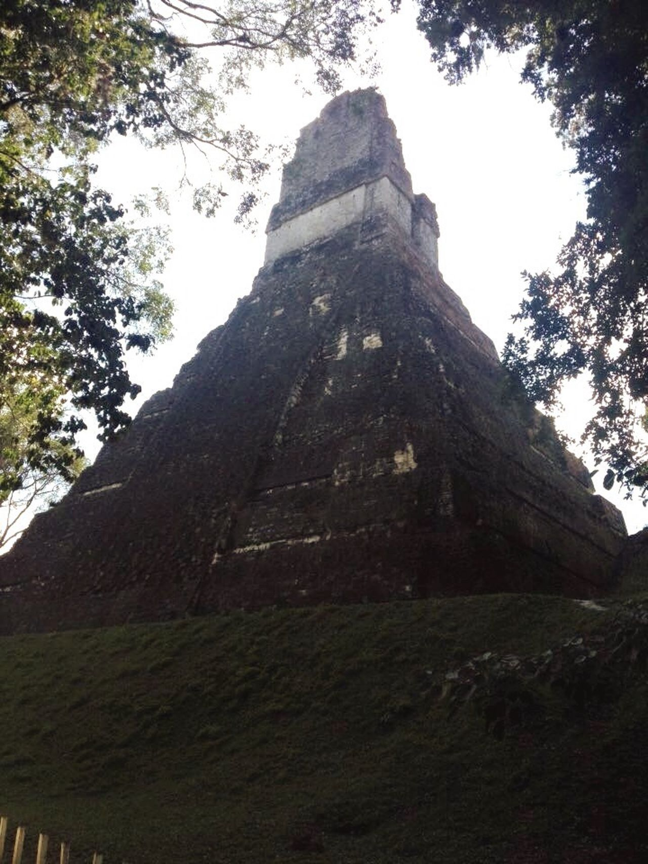 Tikal, Guatemala Guatemala Maya Pyramid Jungle Ruins Old Ancient First Eyeem Photo