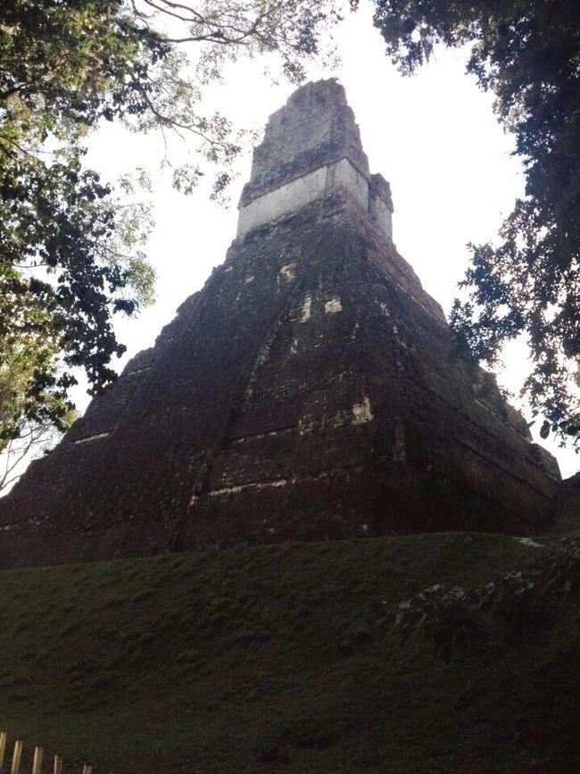 Tikal, Guatemala Guatemala Maya Pyramid Jungle Ruins Old Ancient First Eyeem Photo