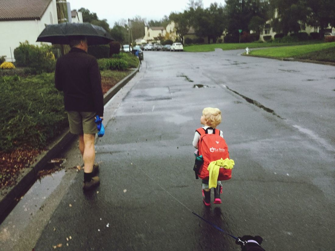 Full Length Childhood Outdoors Day People Rain Umbrella Backpack Red Little Girl Cute Child Elementary Age Father Family Blond Hair Little Black Dog Athletic Weather Walking Going Away Diminishing Perspective The Way Forward Three Friendship