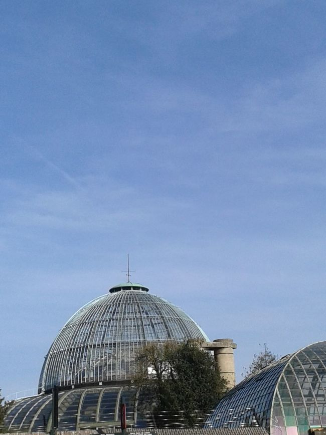 Laeken Eye Em Around The World Brussels Royalpark