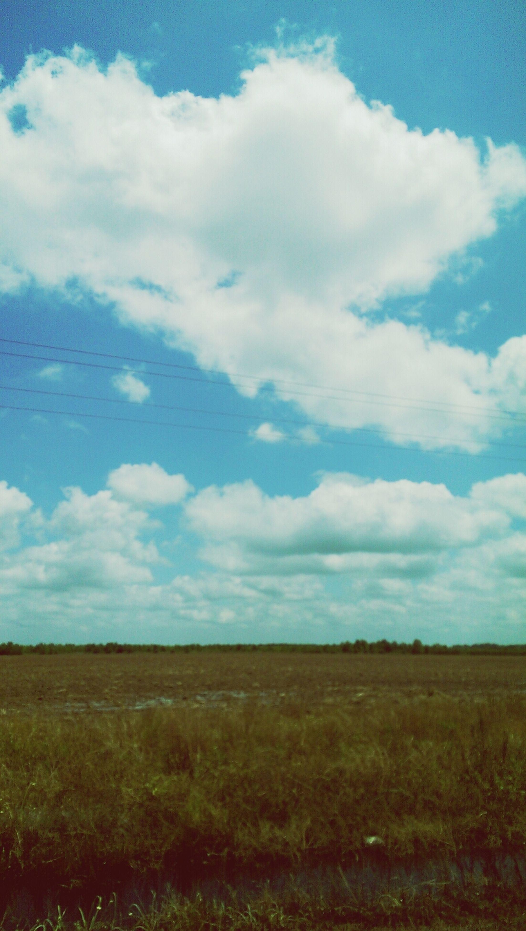 sky, landscape, tranquil scene, tranquility, cloud - sky, field, scenics, cloud, grass, beauty in nature, nature, horizon over land, blue, cloudy, non-urban scene, remote, rural scene, day, grassy, idyllic