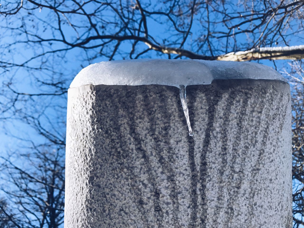 Stone Art Scenics Frozen Statue Malmö Flowers Low Angle View Blue No People Close-up Sky Outdoors Nature Day