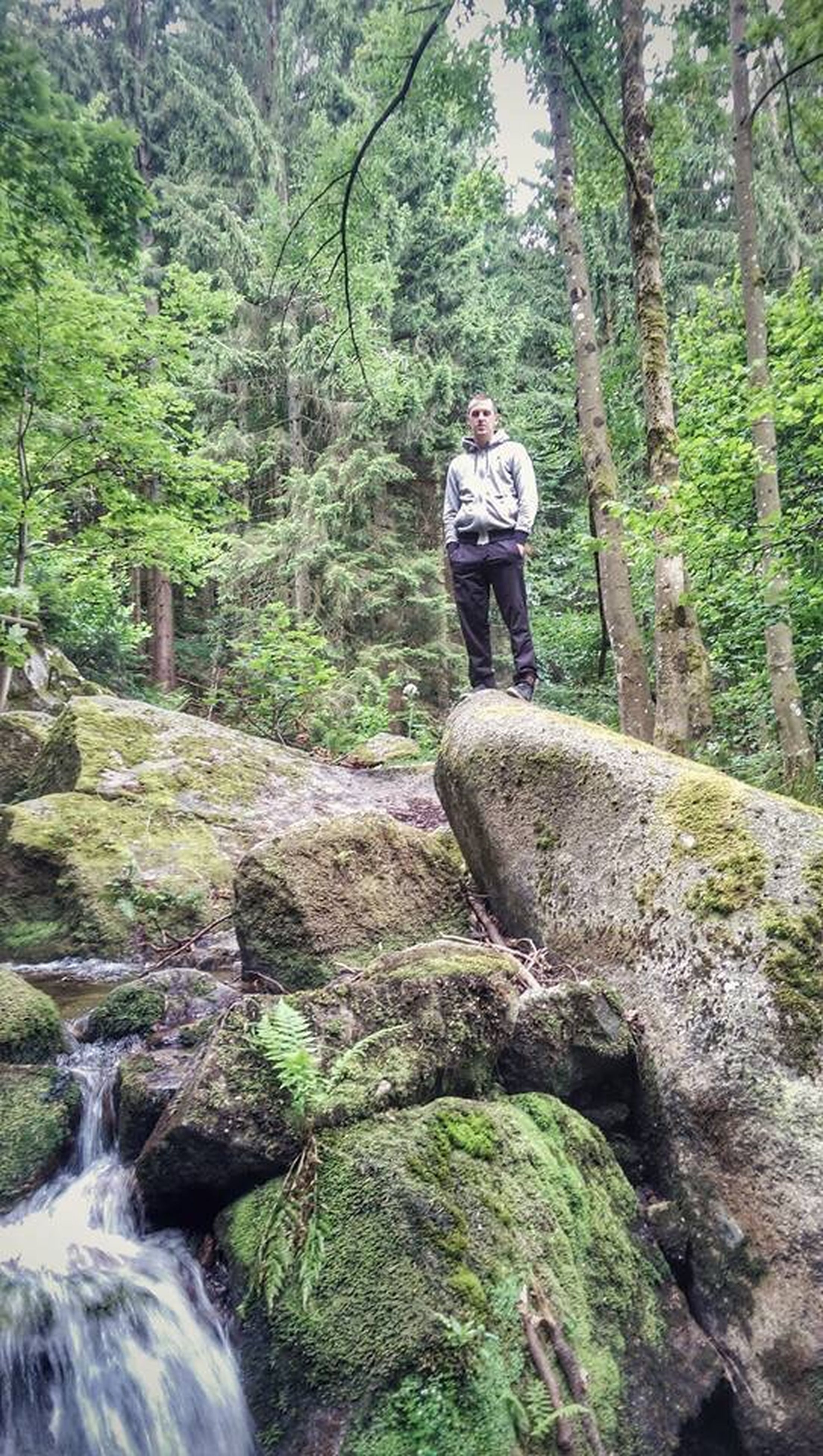 tree, forest, rock - object, leisure activity, lifestyles, full length, nature, casual clothing, water, waterfall, growth, beauty in nature, green color, motion, standing, rock, flowing water, tranquility
