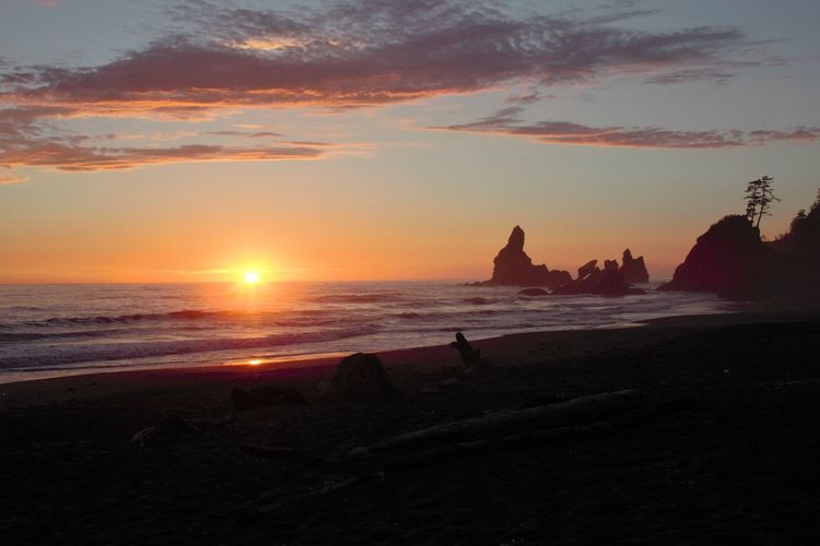 Pacificcoast Pacificsunset PNW Pnwlife Pnwwonderland ShiShiBeach Sunset Sunsetandsea Upperleftusa Washingtonstate