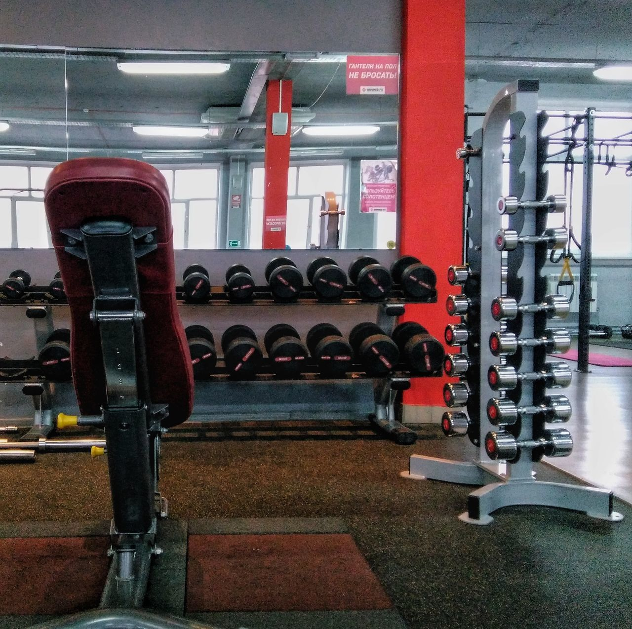 Dumbbells are waiting Gym No People Dumbbells Sport Bodybulding Fitness Streamzoofamily