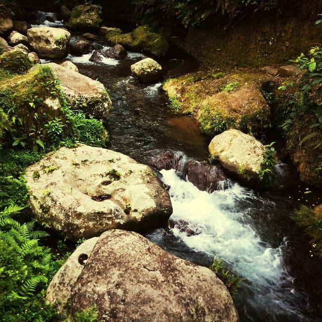 Pakerisan River Temple Gianyar Bali