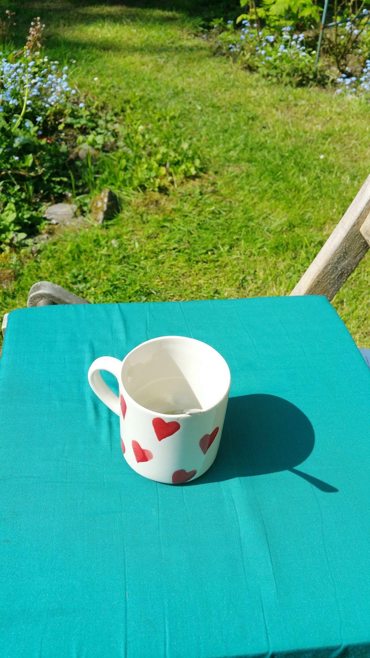 A cup on a chair in the garden High Angle View Blue Grass No People Outdoors Close-up Day Pillow Cushion Forget Me Not Garden Hearts Cup Mug Love Coffee Tea Romantic Sunshine Wales Green Color Cosy Comfy  Summer Spring