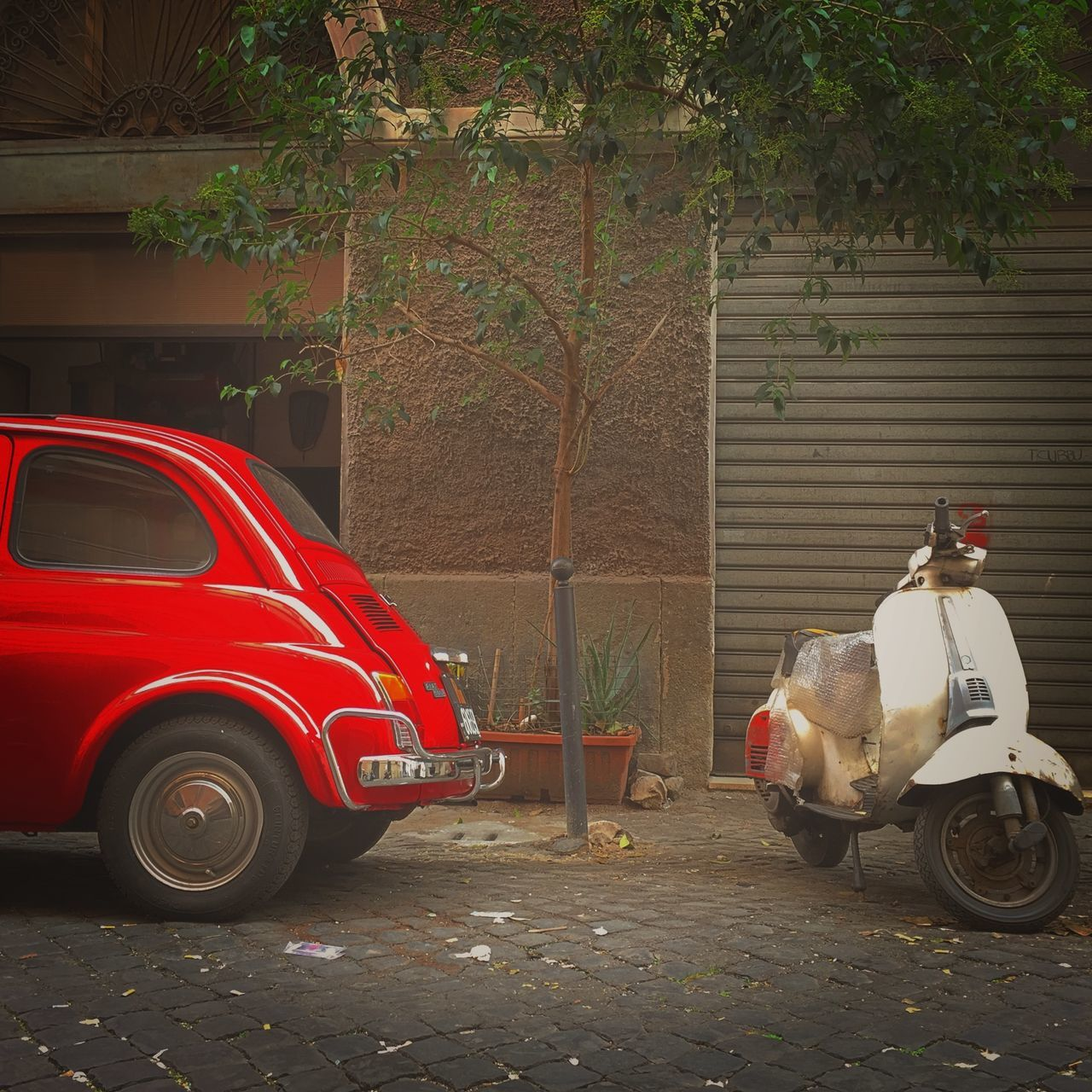 transportation, land vehicle, mode of transport, tree, red, car, stationary, outdoors, day, built structure, no people, architecture, branch
