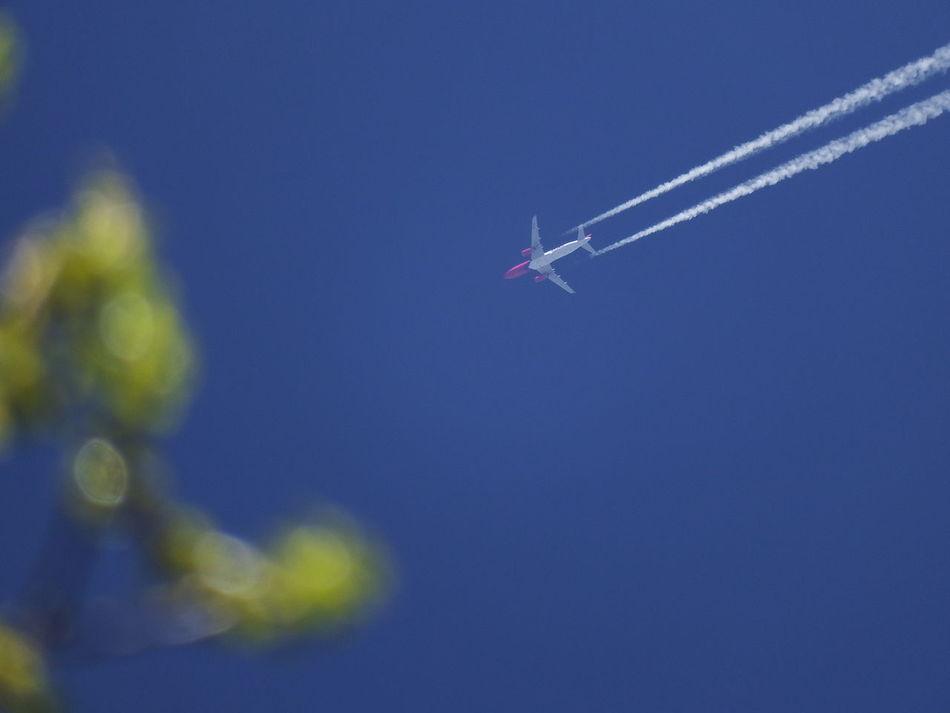 Beautiful stock photos of transport, Germany, Mannheim, Vapor Trail, airplane