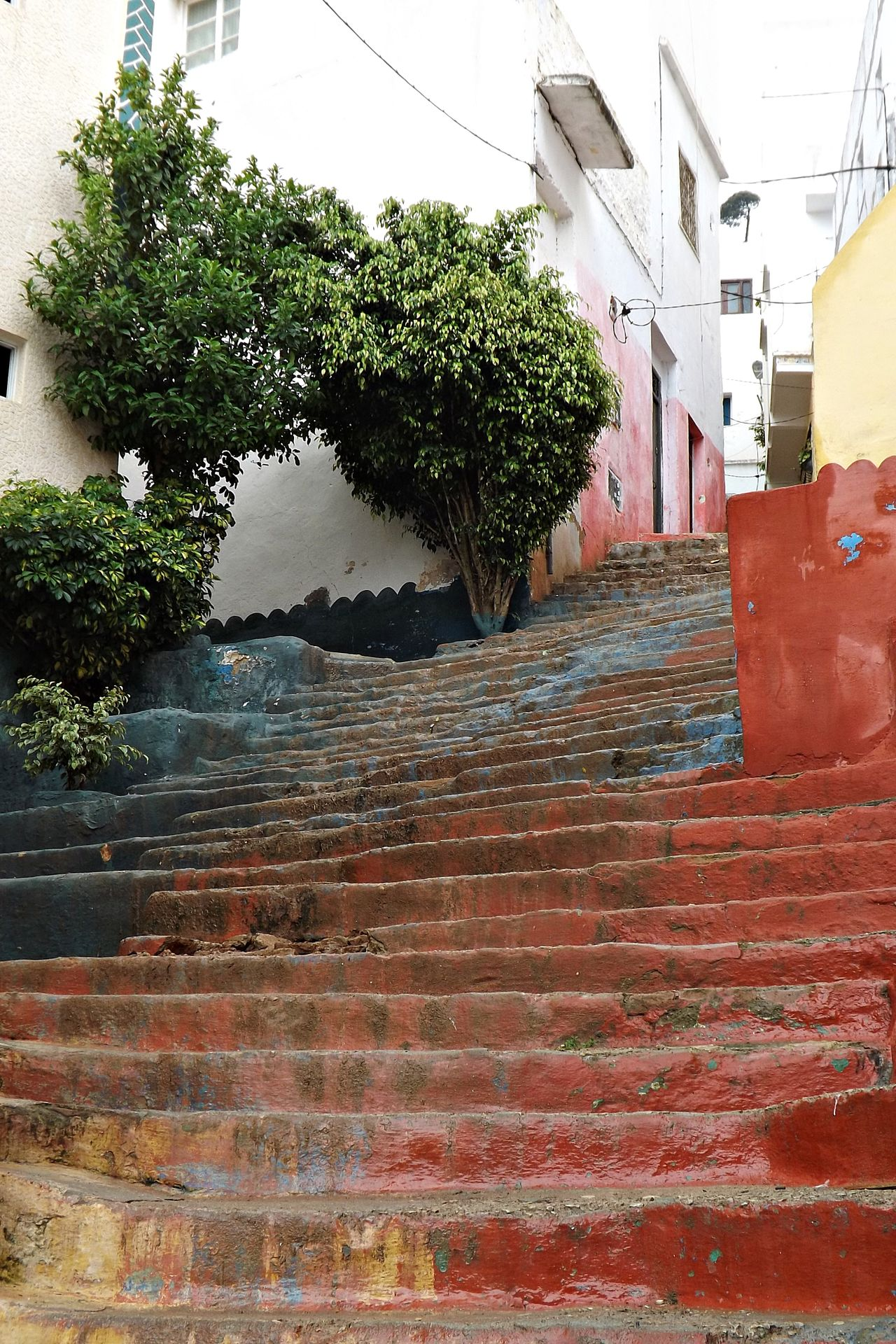 Ancienne Maisons Architecture Building Exterior Built Structure Cable City Day Escaliers Growth Maroc Nature No People Outdoors Plant Plantes Rue Ruelle Sky Tree
